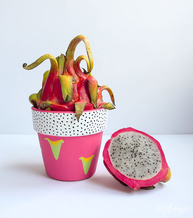 Dragon fruit planter