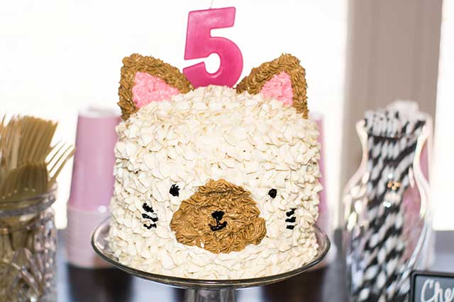 Siamese cat cake ideas